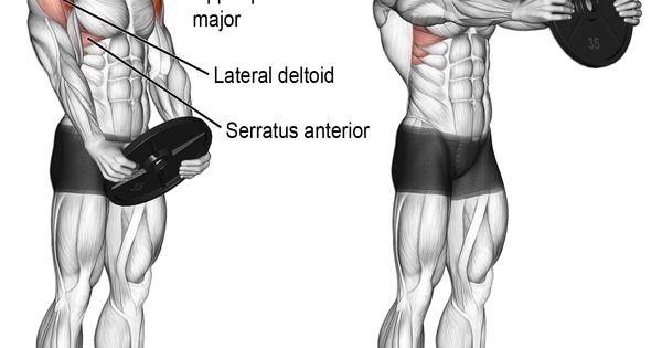 rear delt lateral raises instructions