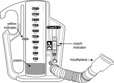 airlife manual spirometer normal levels