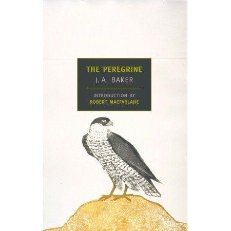 The peregrine ja baker pdf free