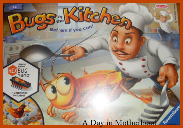 Bugs in the kitchen instructions