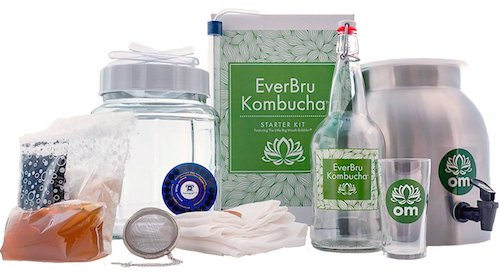 kombucha starter kit instructions