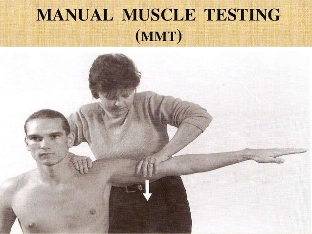 manual muscle testing chart pdf
